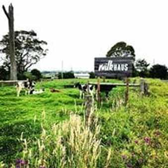 Milk Haus sign